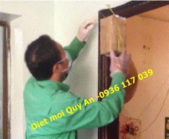 Các bước diệt mối tận gốc tại Quận 6 TPHCM của QUÝ AN
