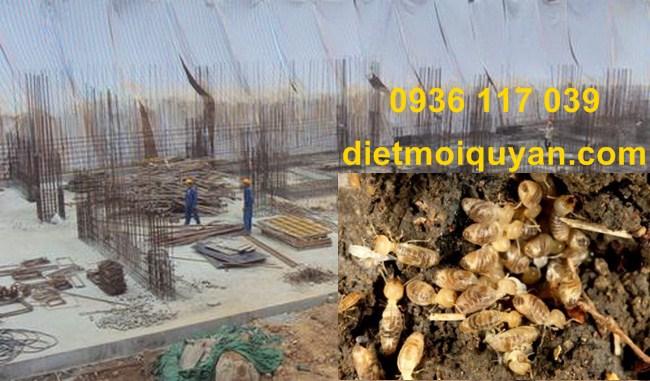 phương pháp  diệt mối cho công trình xây dựng tại quận 2