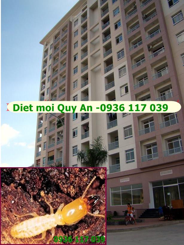 Diệt mối tận gốc tại khu chung cư An Lộc- Gò Vấp