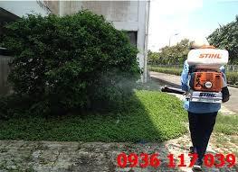 Thông tin thuốc diệt côn trùng-thuốc diệt muỗi Permerthrin 50EC