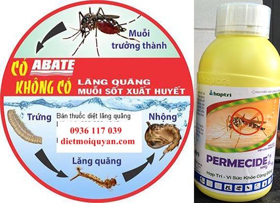 Hướng Dẫn Tìm hiểu Về Cách diệt Mói Và Phun phòng   Muỗi