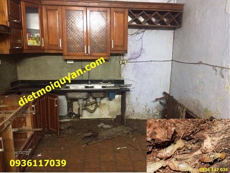 Tìm cách diệt mối làm tổ tại khu vực nhà bếp