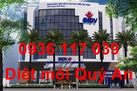 Công ty diệt mối tận gốc tại ngân hàng quận 2 TPHCM-uy tính