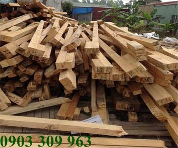 Cần diệt mối gỗ cho nhà kho quận Bình Thạnh
