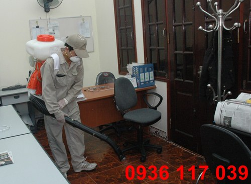 Công ty Diệt mối tận gốc tại các văn phòng quận 5 Hcm
